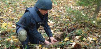 У лісі на Франківщині знешкодили два артснаряди
