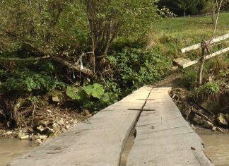 По розпиляній колоді через воду. Як живеться мешканцям гірського села на Прикарпатті ВІДЕО