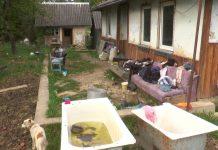 Сім'я хлопчика з Франківщини, який помер від COVID-19, живе за межею бідності - соцслужби не реагують ФОТО та ВІДЕО