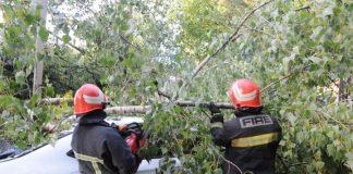 Франківські надзвичайники розпилювали повалені дерева, які пошкодили авто та будинок