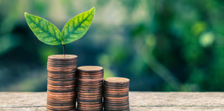 Прикарпатці сплатили понад 275 мільйонів гривень екологічного податку