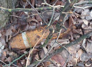 На Прикарпатті серед лісу, замість грибів, виявили артилерійський снаряд