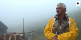 Як прикарпатець майже 40 років займається вівчарством ВІДЕО