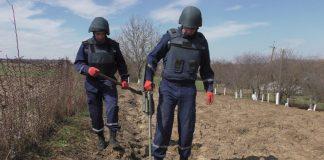 На присадибній ділянці прикарпатського ґазди виявили ручну гранату