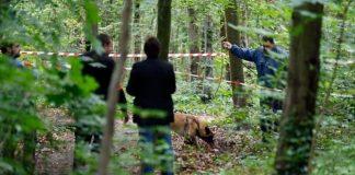 Прикарпатські рятувальники знайшли в лісі бездиханне тіло зниклої жінки