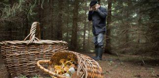 В Лісі на Косівщині заблукав дідусь