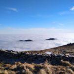 Окутані хмарами: у мережі показали неймовірні світлини карпатських гір ФОТО