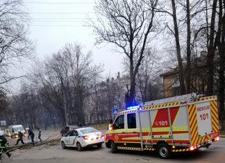 На Чорновола дерево, що впало на дорогу, заблокувало рух автотранспорту ФОТО