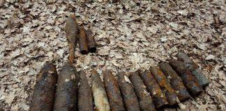 У селі на Коломийщині виявили майже півсотню вибухонебезпечних предметів
