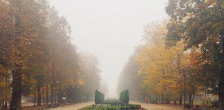 Синоптики розповіли, якою буде сьогодні погода в Івано-Франківську