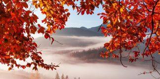 На Прикрпатті визначили топ-10 місць туристичних локацій листопада