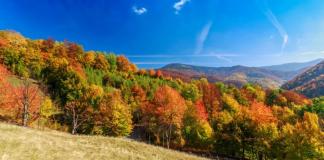 Як недорого відпочити в Карпатах цієї осені