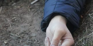 Під час обрізання гілок впав з дерева та розбився на смерть літній прикарпатець