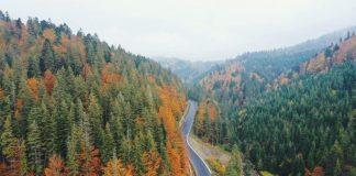 У гірських районах Прикарпаття завершили капітальний ремонт автотраси ФОТО