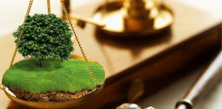 На Прикарпатті завдяки прокуратурі товариство поверне державі землю вартістю майже 13 мільйонів
