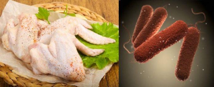 Прикарпатців попереджають про небезпечні курячі крильця в яких виявили сальмонелу