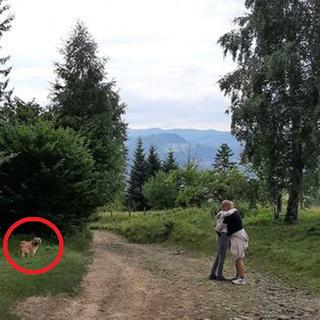 Сім'ю Софії Андрухович з собакою тримали зачиненими в номері Буковелю, поки туристи-араби їли на вулиці? ФОТО